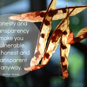 Being Transparent